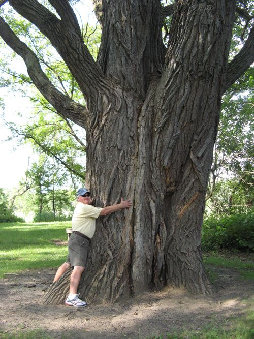 Bill-tree-hug