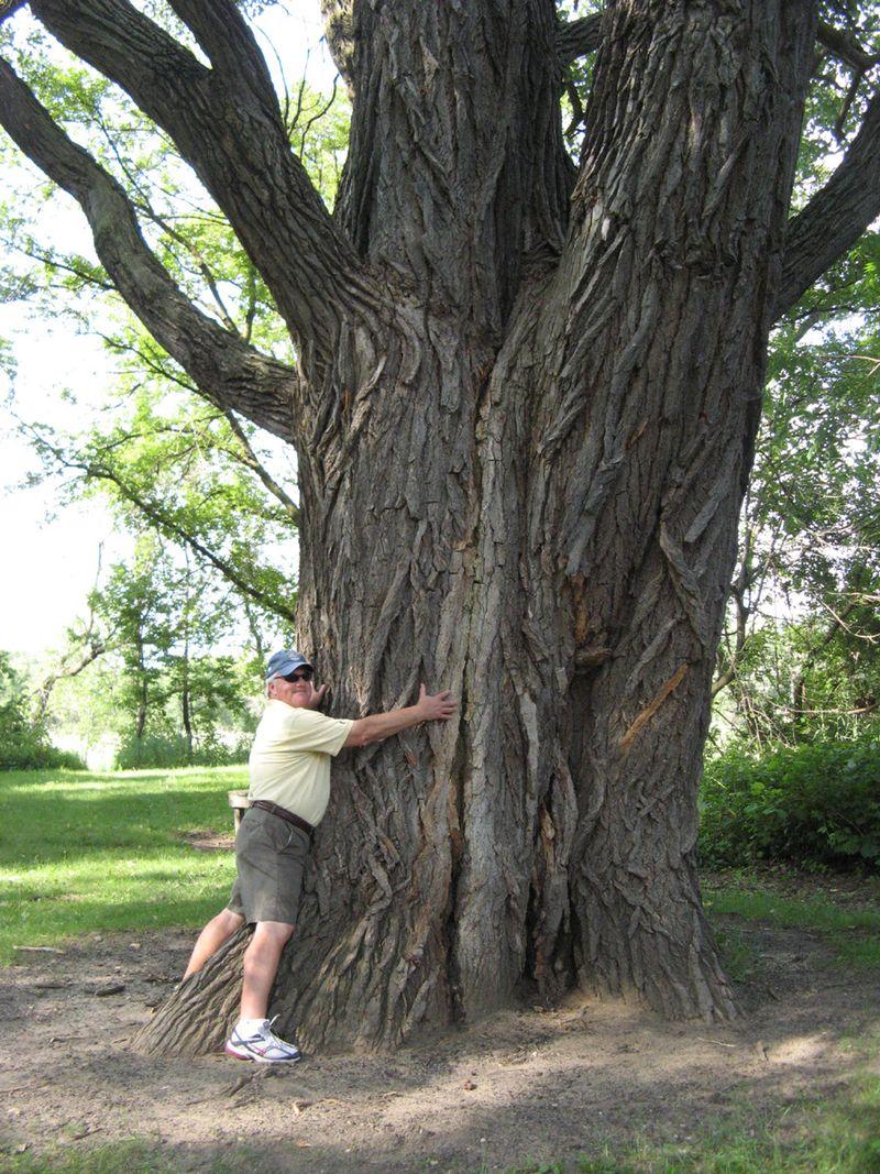 Bill-tree-hug